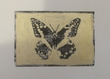 """Principus Demodocus""- Hand-coloured linocut of a butterfly in black and gold"