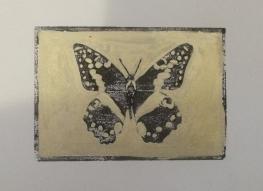 Principus demodocus - A6 Hand coloured Linocut on Fabriano