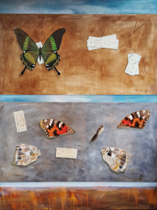 Still life of whole and broken butterfly specimens with pin and labels